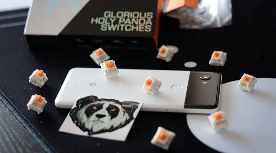 Picture of Gloarious Hola Panda switches when choosing the best keyboard for VALORANT.